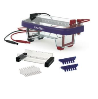 imgcat-ELECTROFORESIS-DE-ADN2
